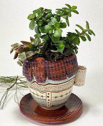 Mug Succulent Planter