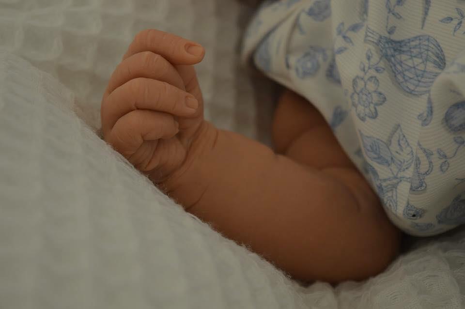 Elyse Hand