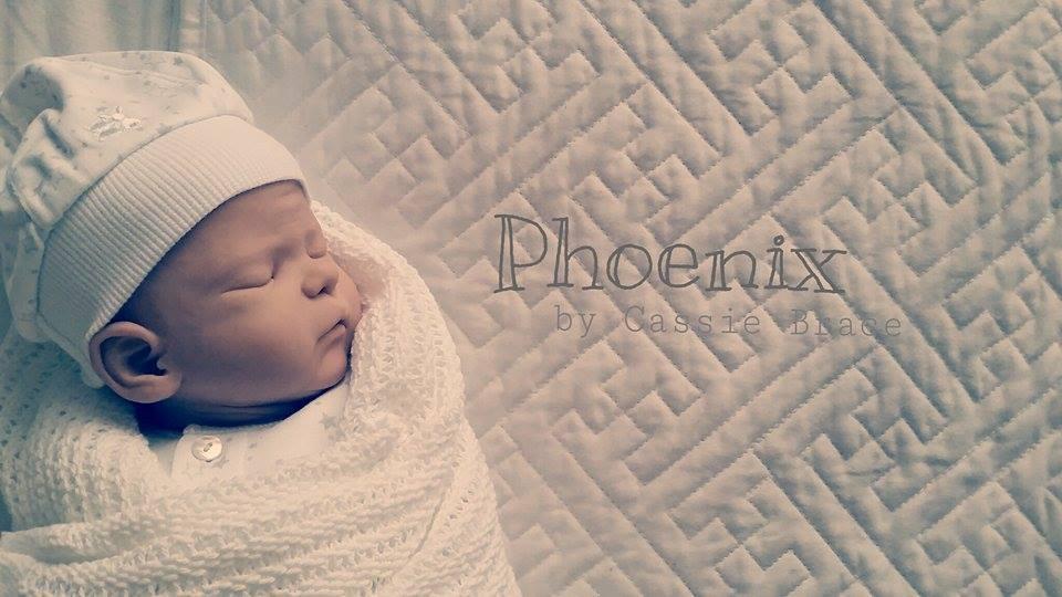 Phoenix draft 1
