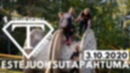 ESTEJUOKSUTAPAHTUMA-2.jpg