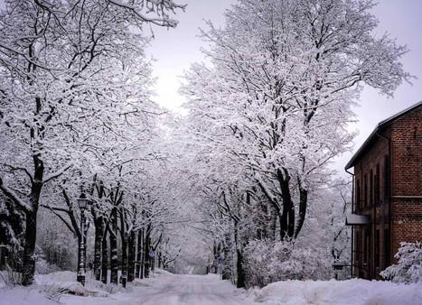 Loimovuori Photography-places-winter-vil