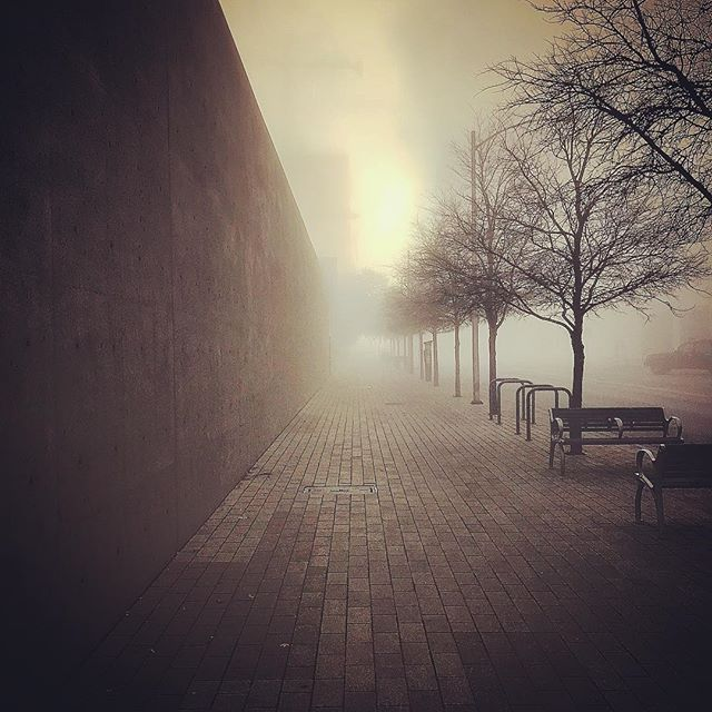 The fog casting a haunting beauty this S