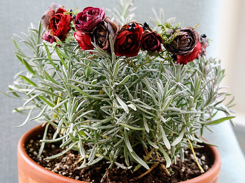 Winter Berry Crown