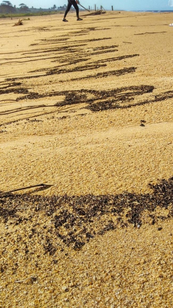 limites de areia e mar