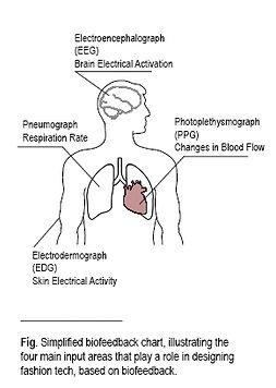 biofeedback_chart.jpg