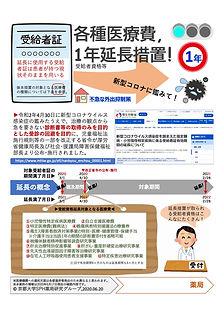 【受給者証1年延長】フライヤー(FIX3).jpg