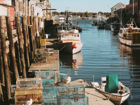 Communities, Conservation and Livelihoods