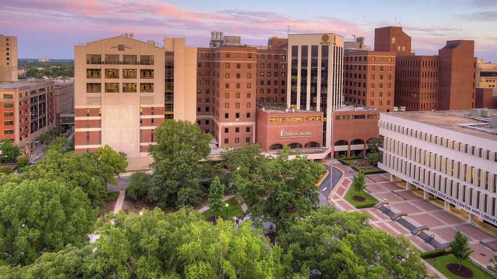 MUSC-HorseShoe_retouched_1920x1080_18000