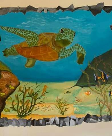 Broken Wall Turtle