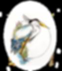 psl logo web no name.png