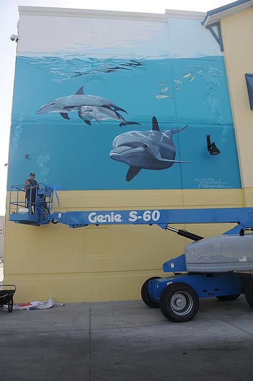 Michael Alexande Dolphin Project.jpg