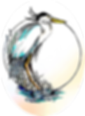 pslal logo without words res 360.png