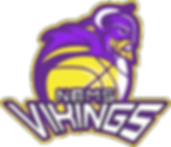 Viking Athletic Page.png