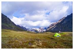 Tundra Home