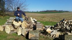 Post Tree Work