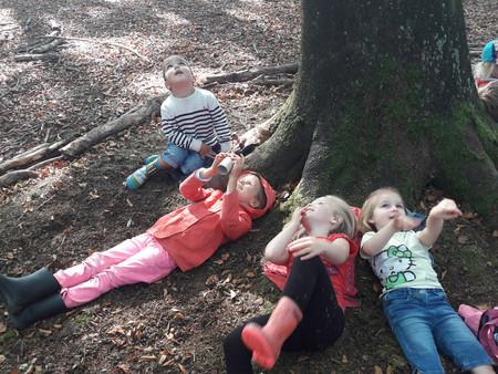 Première expédition au bois de Loo en maternelle