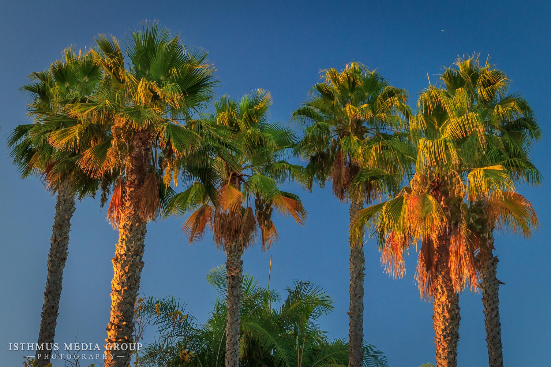 California Coast - 6395
