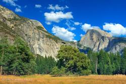 Yosemite National Park - 8877