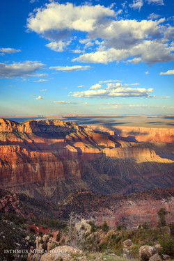 Grand Canyon - 1402