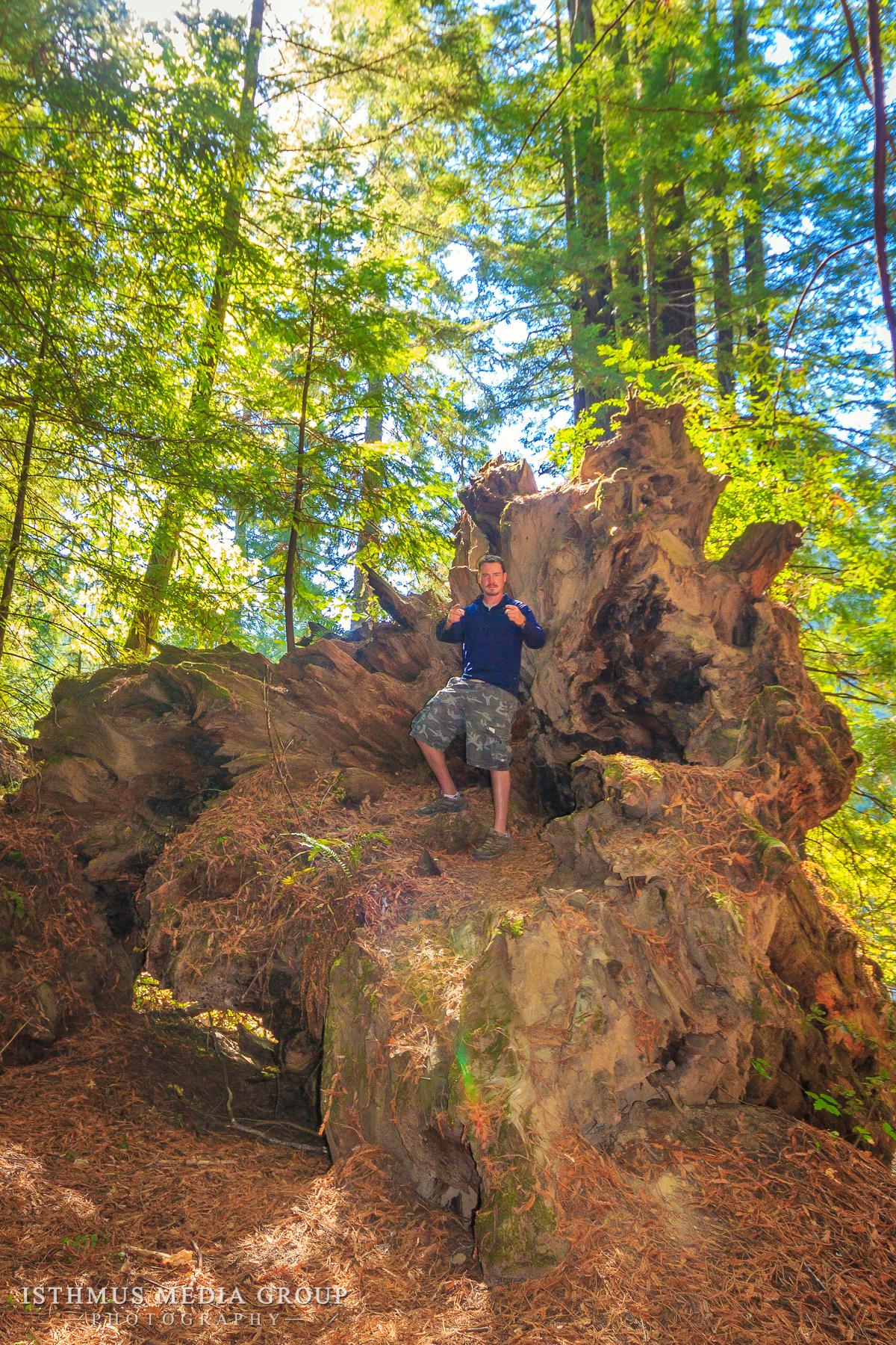 Humboldt Redwoods - 7872