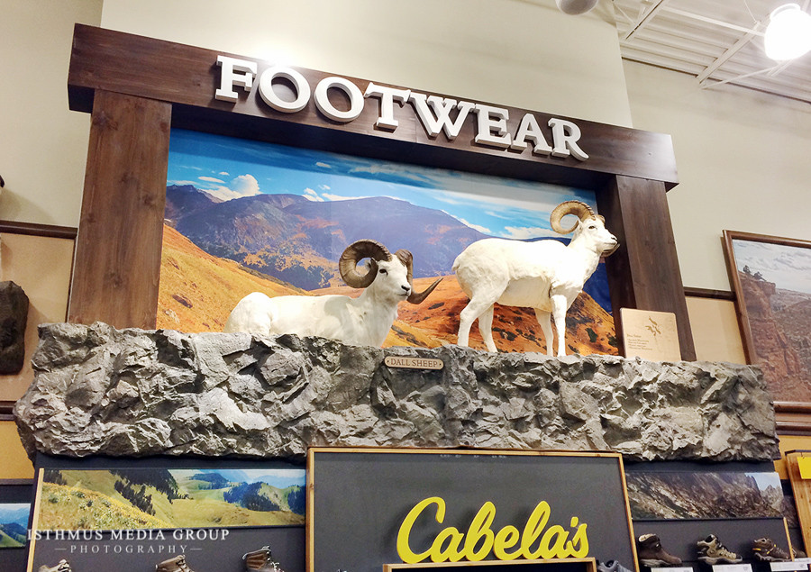 Cabelas - Large Prints-4.jpg