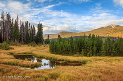 Rocky Mountains - 2978
