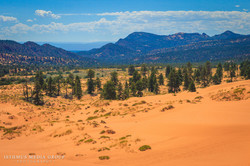 Coral Sand Dunes - 1081