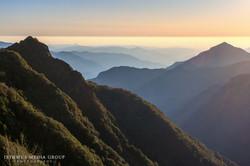 Giant Sequoia - 1312