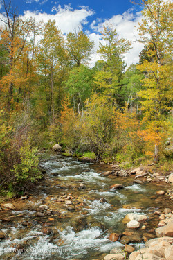 Rocky Mountains - 2607