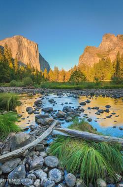 Yosemite National Park - 9031