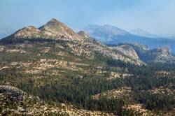 Yosemite National Park - 9308