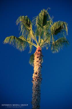 California Coast - 6367