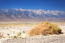 Death Valley - 0294