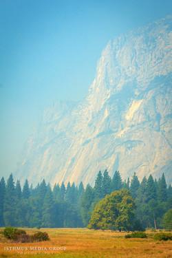 Yosemite National Park - 9156