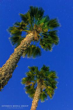 California Coast - 6353