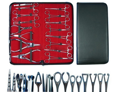 16 piece Piercing Kit.jpg
