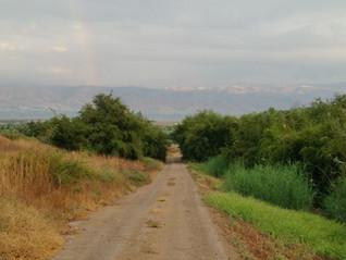 Der Weg ist das Ziel - der Weg ist das Bild.
