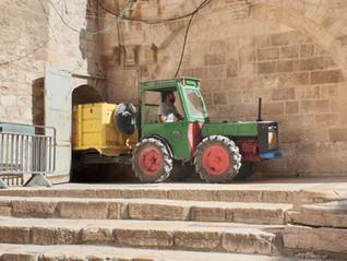In Jerusalem aufgesammelt