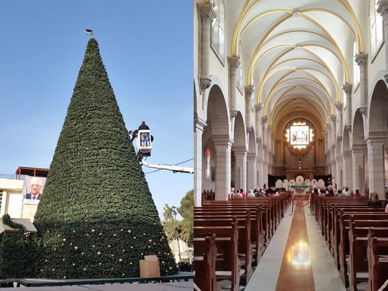 Bethlehem: Der Weihnachtsbaum auf dem Mangerplatz wird geschmückt und rechts die Katharinenkirche Tage vor der Mitternachtsmesse