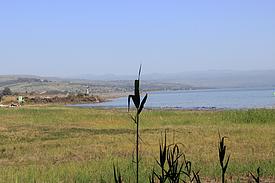 Israel See Genezareth Ausblick Golan