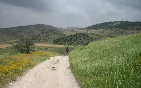 The Judean Hills in Israel