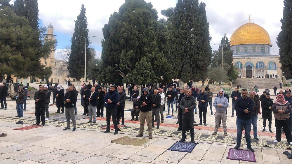 Jerusalem, Mittagsgebet am Sonntag auf dem Tempelberg