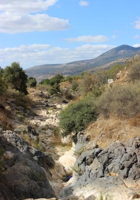 Hermon and river Sa'ar