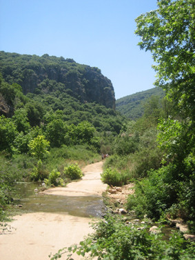 Valley of the Kziv river/Upper Galilee