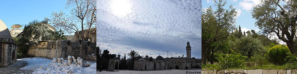 Jerusalem Führung: Dach Grabeskirche Tempelberg Garten Gethsemane