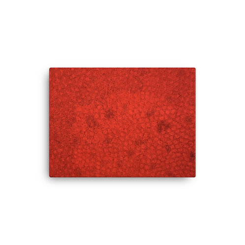 Red Pattern Printed Canvas
