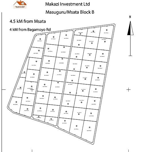 Shamba la Msata Block B.jpg
