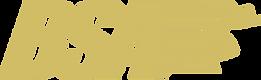 BSA Logo PNG.PNG