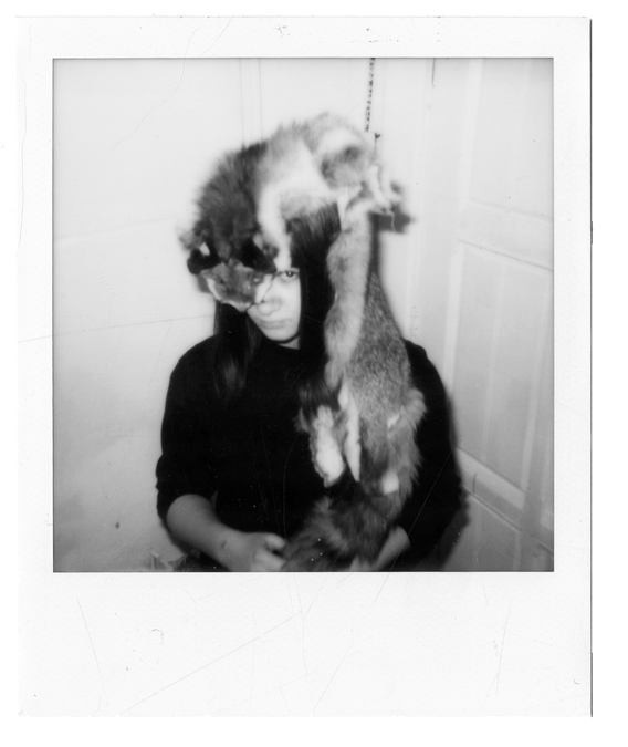 fox | polaroid