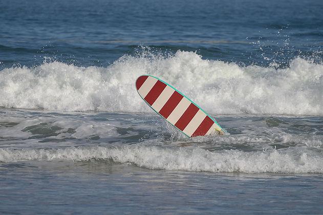Cellecomte_SURF07_BD_T.jpg